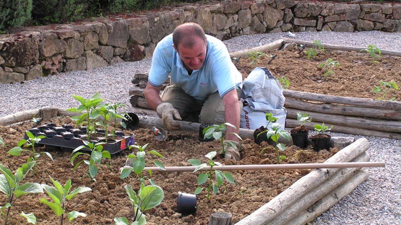 tuscan-villa-organic-garden